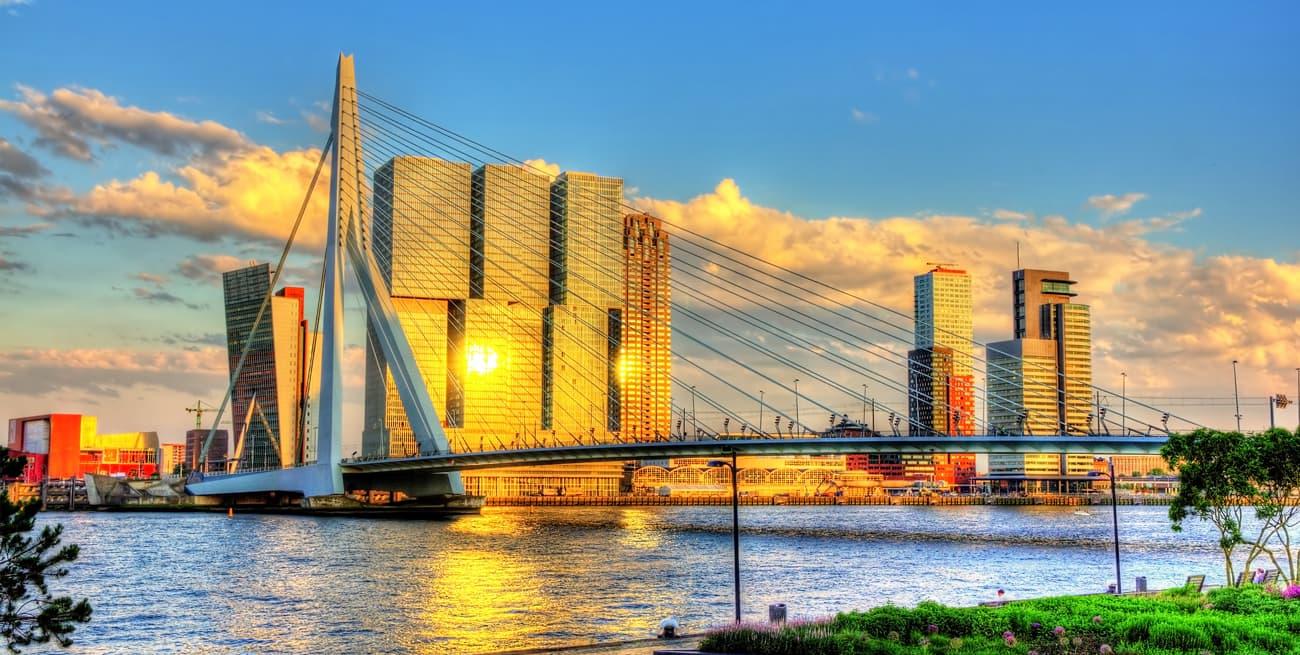 鹿特丹天鵝橋